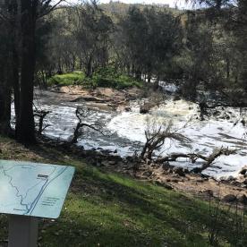 Walyunga NP Perth WA